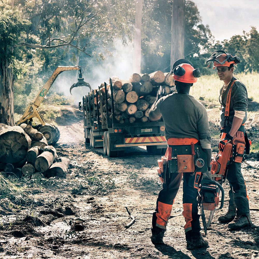 Stroji in oprema za gozdarstvo